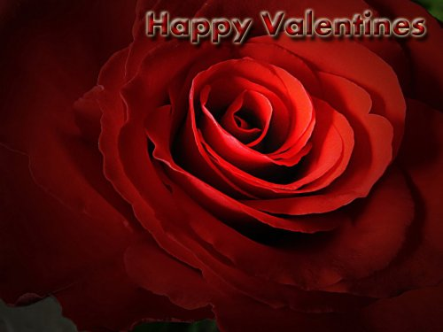 valentines-day-2013-hd-wallpapers_6jpg1